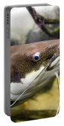 Redtail Catfish Portable Battery Charger