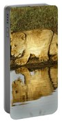 Reflected Lions Portable Battery Charger