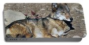 Resting Wolf Portable Battery Charger