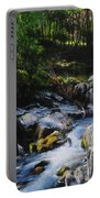 River In Wales Portable Battery Charger