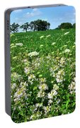Roadside Wildflowers In Mchenry County Portable Battery Charger