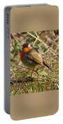 Robin In Hedgerow Portable Battery Charger