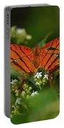 Ruddy Daggerwing Butterfly Portable Battery Charger
