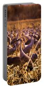 Sandhills In The Corn Portable Battery Charger