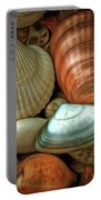 Sea Pebbles With Shells Portable Battery Charger
