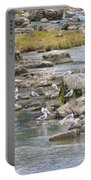 Seagulls On The Rocks Portable Battery Charger