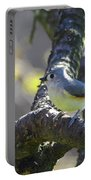 Tufted Titmouse - Small Bird Portable Battery Charger