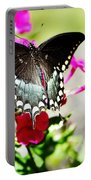 Spicebush Swallowtail Portable Battery Charger