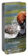Splash Time Portable Battery Charger