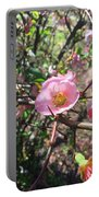 Springtime In The South Portable Battery Charger