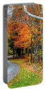 Stone Autumn Road Portable Battery Charger