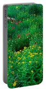 Stream And Alpine Flowers, Ouray Portable Battery Charger