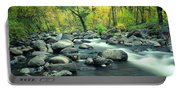 Stream In Cottonwood Canyon, Sedona Portable Battery Charger