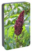 Sumac Fruit Portable Battery Charger