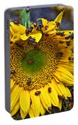 Sunflower Covered In Ladybugs Portable Battery Charger