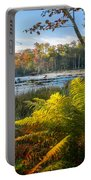 Sunrise In The Swamp Portable Battery Charger