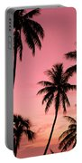 Tahiti, Papeete Portable Battery Charger