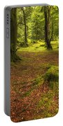 The Ardgartan Forest Portable Battery Charger