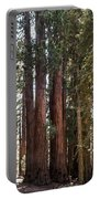 The House Group Giant Sequoia Trees Sequoia National Park Portable Battery Charger