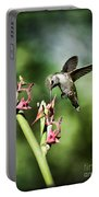 The Hummingbird  Portable Battery Charger