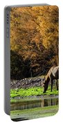 The Salt River Wild Horses  Portable Battery Charger