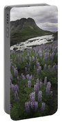 Thofafoss Waterfall Iceland 1571 Portable Battery Charger