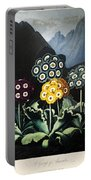 Thornton: Auriculas Portable Battery Charger