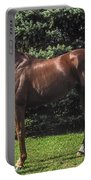 Thoroughbred Stallion Portable Battery Charger