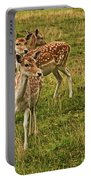 Three Fallow Deer Portable Battery Charger