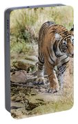 Tiger In The Woods Portable Battery Charger