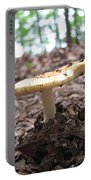 Toad Stool II Portable Battery Charger