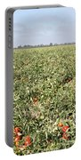 Tomato Field, California Portable Battery Charger