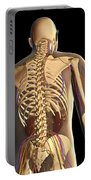Transparent View Of Human Body Showing Portable Battery Charger