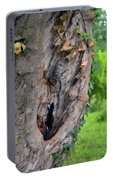Tree Bark Detail, Natural Background. Portable Battery Charger
