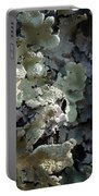 Tree Bark With Lichen Portable Battery Charger