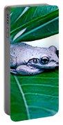 Tree Frog On Desert Rose  Portable Battery Charger