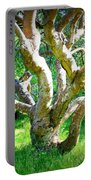Tree In Golden Gate Park Portable Battery Charger