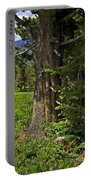 Tree In Vail Portable Battery Charger