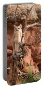 Treed Mountain Lion Portable Battery Charger