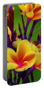 Tropical Warmth Portable Battery Charger