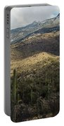 Tucson Landscape Portable Battery Charger
