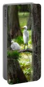 Two Baby Great Egrets And Nest Portable Battery Charger