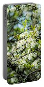 Vermont Apple Blossoms Portable Battery Charger