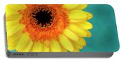 Vibrance Portable Battery Charger
