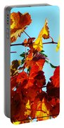 Vineyard 12 Portable Battery Charger