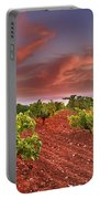 Vineyards At Sunset Portable Battery Charger