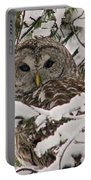What A Hoot Portable Battery Charger