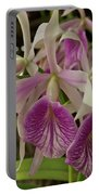 White And Purple Orchids Portable Battery Charger