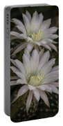 White Echinopsis Portable Battery Charger