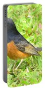 White-rumped Shama Portable Battery Charger
